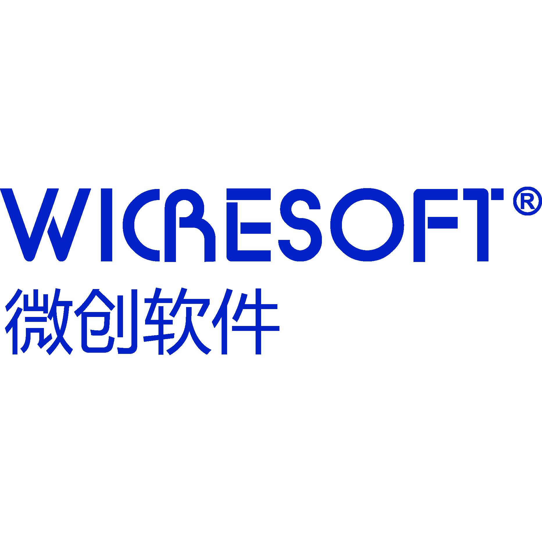 上海微创软件股份有限公司