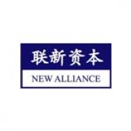 上海联新投资咨询有限公司