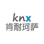 上海肯耐珂萨信息技术有限公司