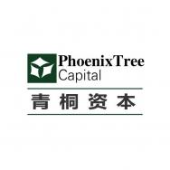 上海青之桐投资管理有限公司