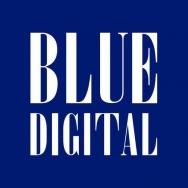 广州蓝色光标市场顾问有限公司