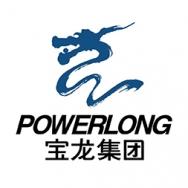 上海宝龙实业发展有限公司