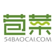 上海苞菜网络科技有限公司