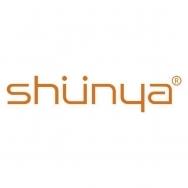 宣亚国际营销科技(北京)股份有限公司上海分公司