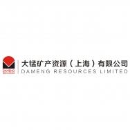 大锰矿产资源(上海)有限公司