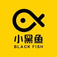小黑鱼科技有限公司