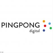 PingPongDigital(数字科技公司)