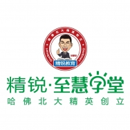 上海锐思科技信息咨询有限公司