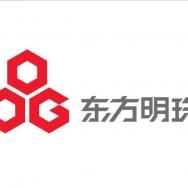 上海东方明珠新媒体股份有限公司